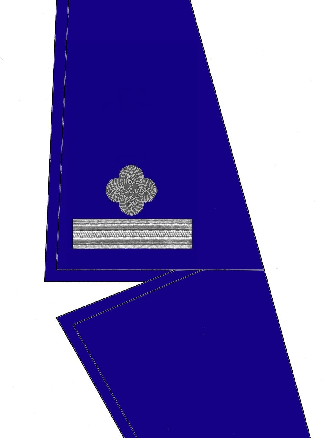 05-kragen-rangabzeichen-wachtmeister-hg-blau