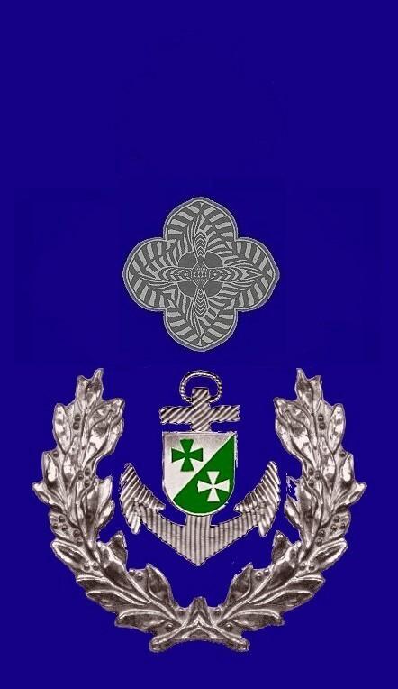08-rosette-rangabzeichen-master-chief-petty-officer-hg-blau