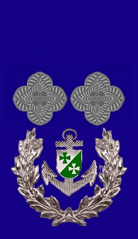 09-rosette-rangabzeichen-commanding-chief-petty-officer-hg-blau