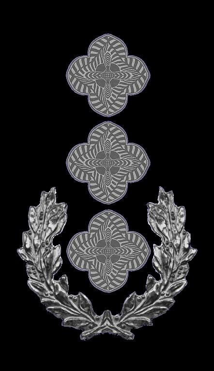10-rosette-rangabzeichen-1-vzlt-csli-hg-blau