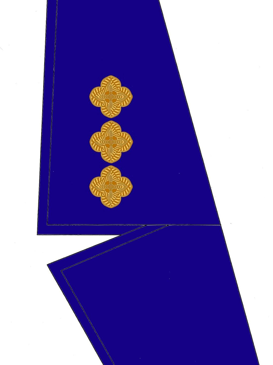 14-kragen-rangabzeichen-hauptmann-hg-blau