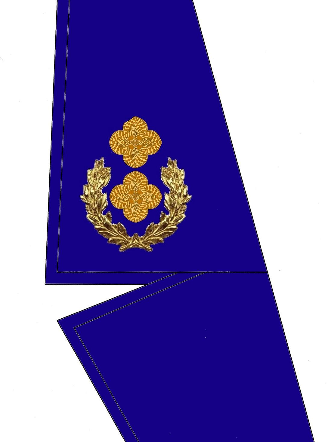 16-kragen-rangabzeichen-obersleutnantt-hg-blau