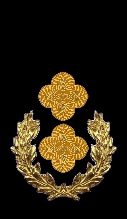 16-rosette-rangabzeichen-obersleutnantt-hg-blau