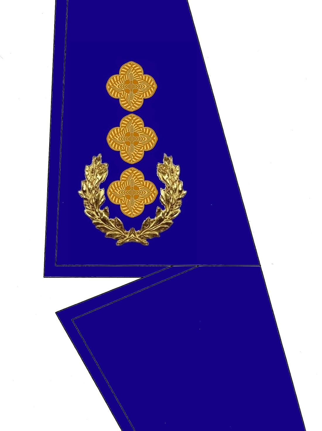 17-kragen-rangabzeichen-oberst-hg-blau