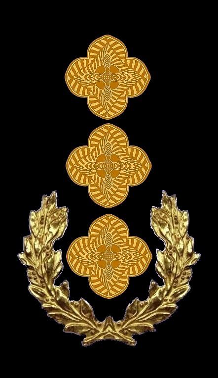 17-rosette-rangabzeichen-oberst-hg-blau