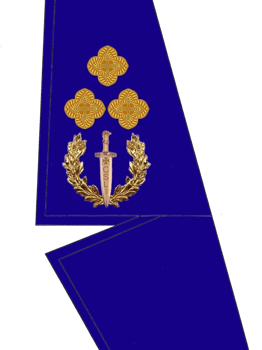 20 Kragen Rangabzeichen General Leutnant HG Blau