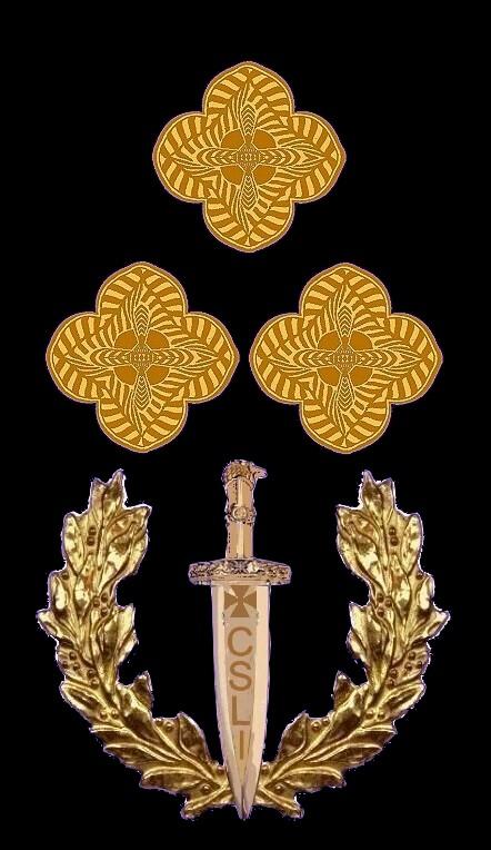 20 Rosette Rangabzeichen General Leutnant HG Blau