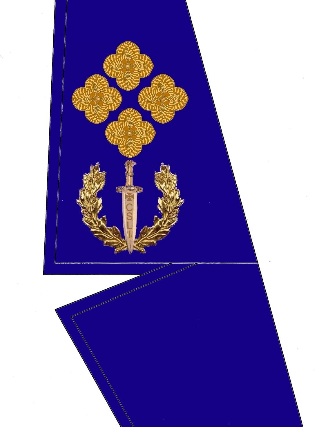 21 Kragen Rangabzeichen General HG Blau