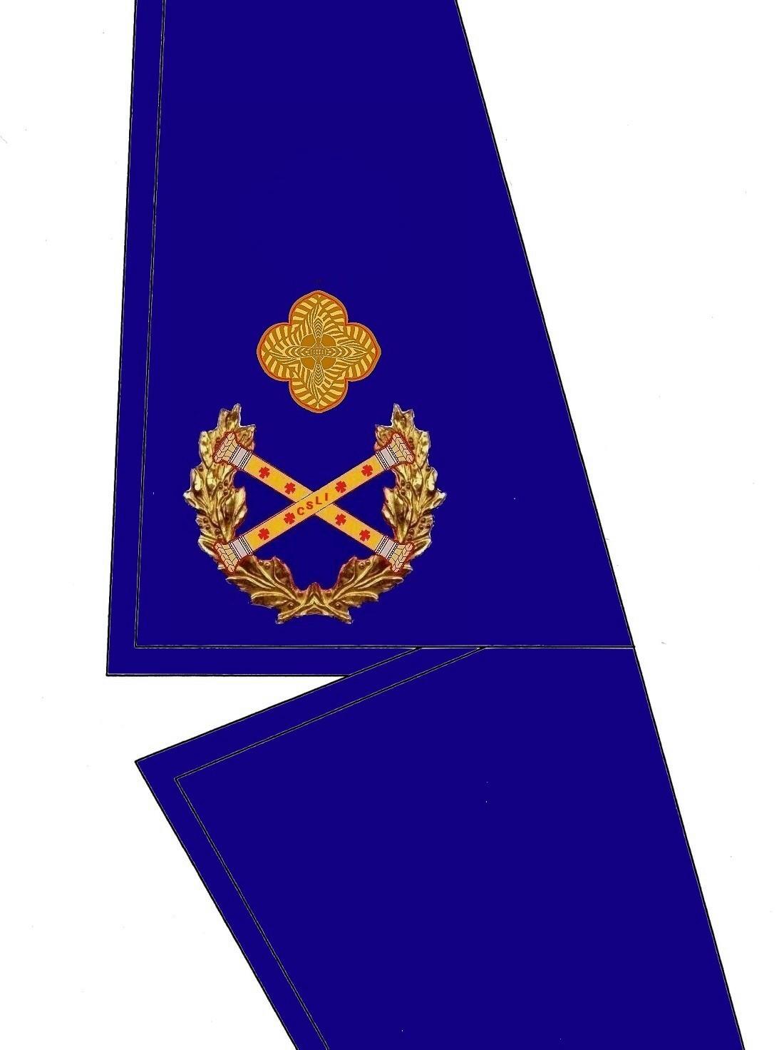 22 Kragen Rangabzeichen Stv. Präsidium HG Blau