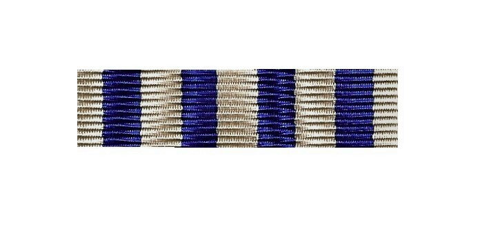 Bandspange neu CSLI Navy Cross