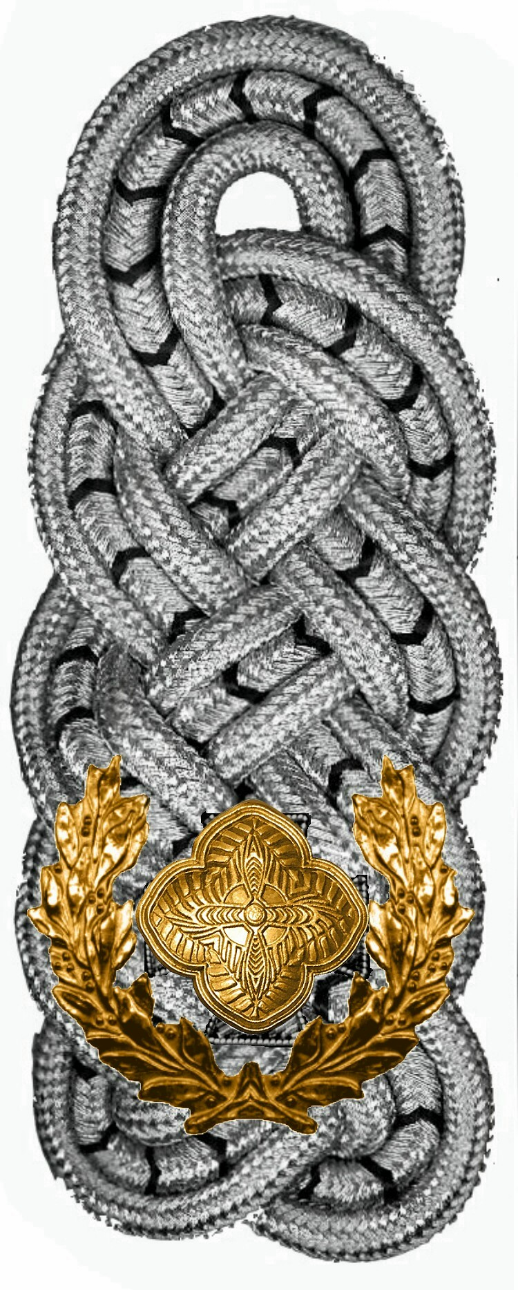 gala-gala-sergeant-major