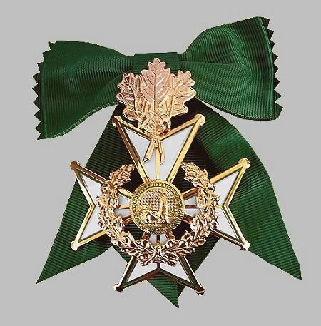 grosses-goldenes-ehrenkreuz-wfk-1-450-hg-hellgrau