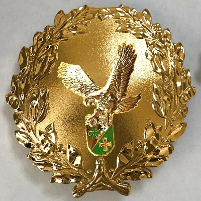 Formationsabzeichen GOLD roh 400 AIR WING