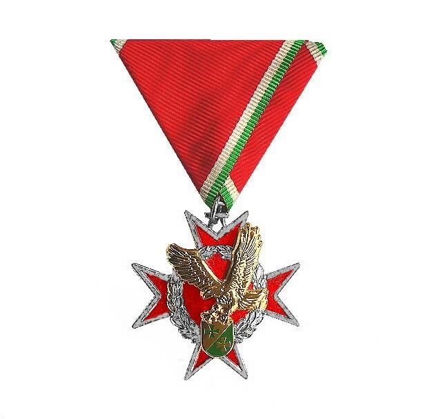 Ehrenkreuz Silber CSLI Air Wing