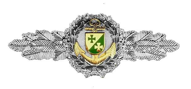 Ehrenspange SILBER CSLI Navy Corps 620 ohne HG