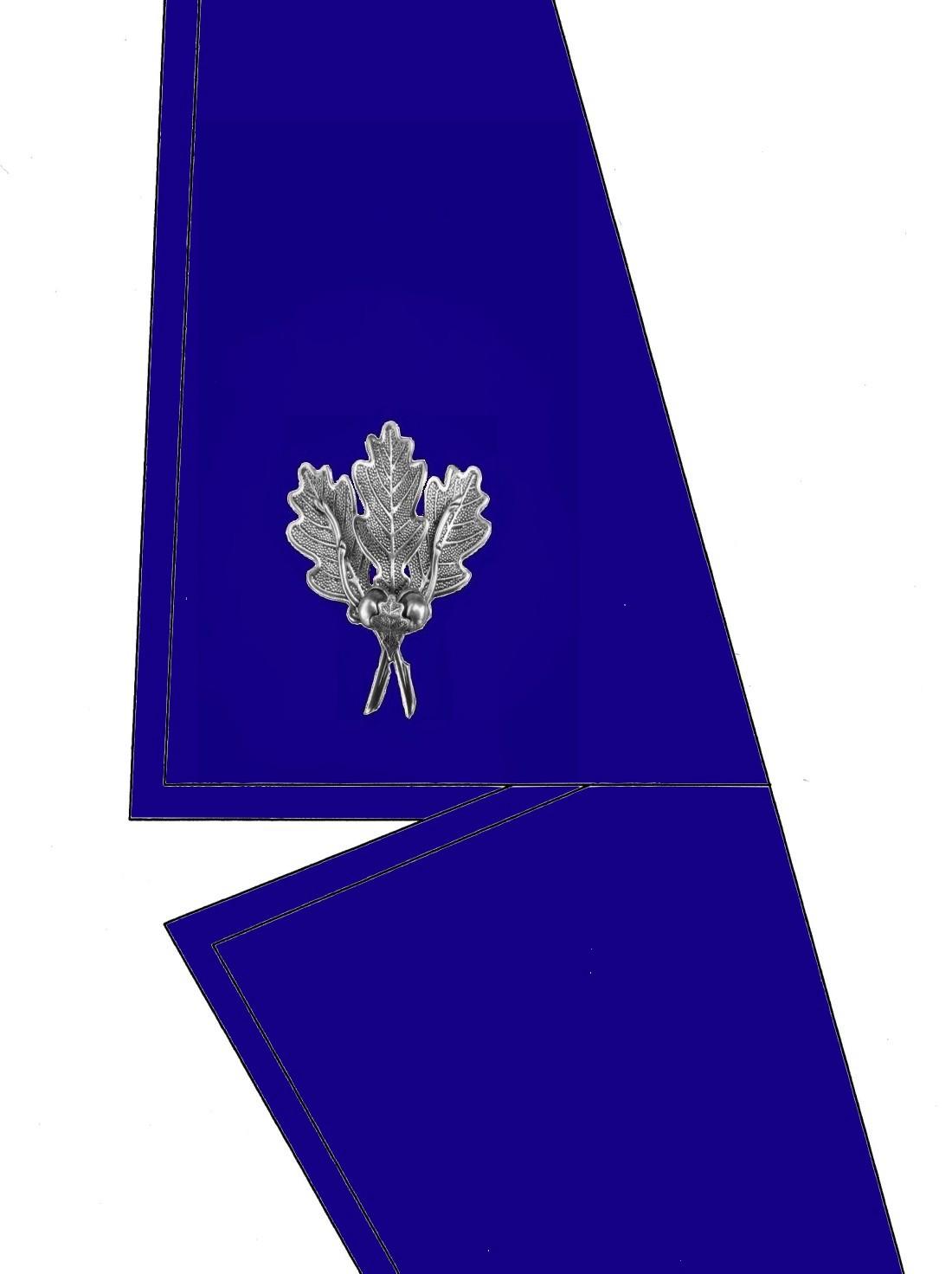 0101-kragen-rangabzeichen-beauftragter-hg-blau
