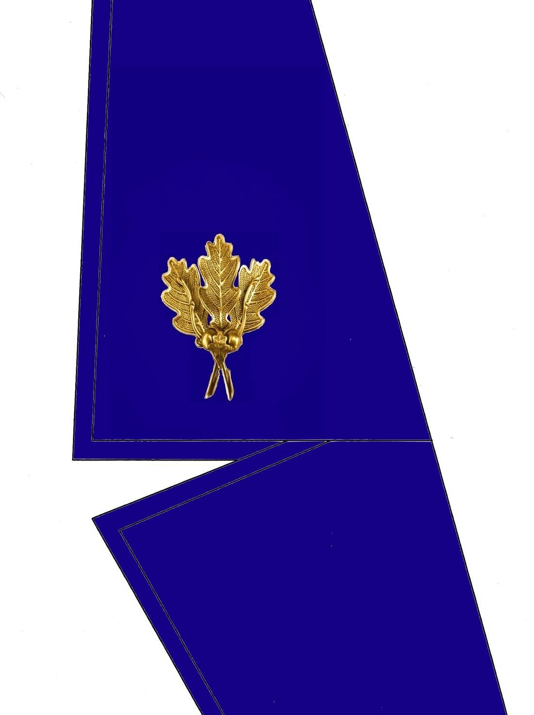 0102-kragen-rangabzeichen-delegierter-hg-blau