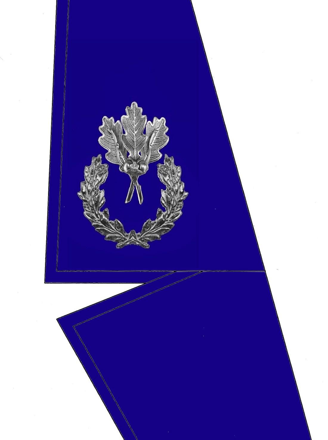 0103-kragen-rangabzeichen-sonderbeauftragter-hg-blau