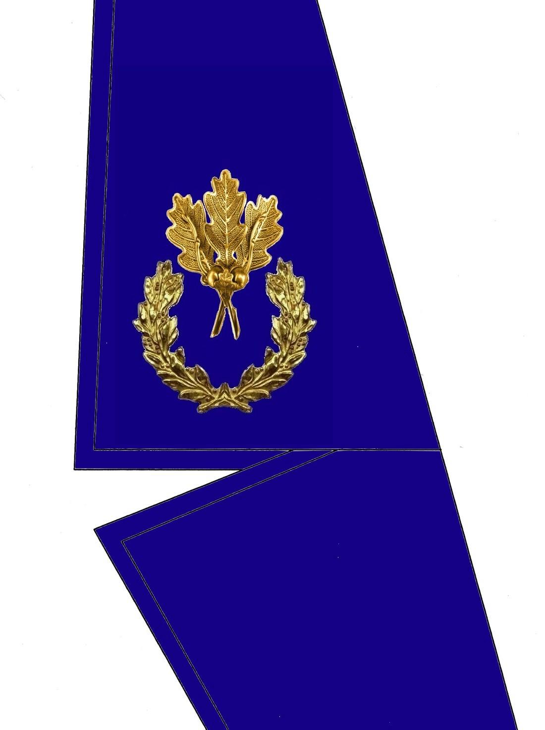 0105-kragen-rangabzeichen-botschafter-hg-blau