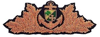A zugeschnitten Bewährungsabzeichen BRONZE 350