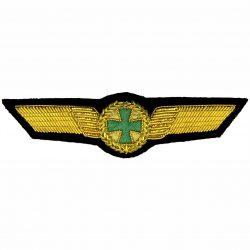 CSLI Air Wing