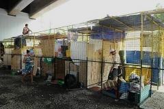 2016-01-29-Slums in Manila-05