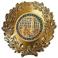 Formationsabzeichen GOLD roh 200 BOARD ohne HG