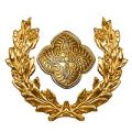 rangabzeichen-kranz-gold-und-rosette-200
