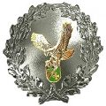 Formationsabzeichen SILBER roh 200 AIR WING